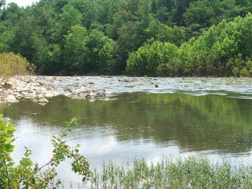 Maury River below Goshen Jul72006