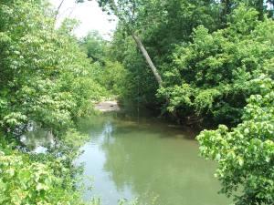 Roanoke River rope swing Rt 821 Peaceful Road Roanoke County Jul 13 2014