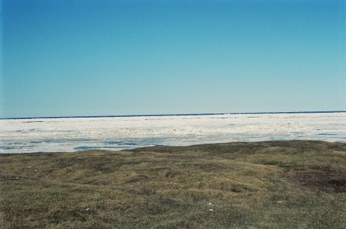 Tundra and Arctic Ocean Barrow Alaska Jun24 2005