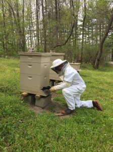 Raflo in bee suit recording Apr21 2016 by Stephen Schoenholtz USED Radio 313 4-25-16