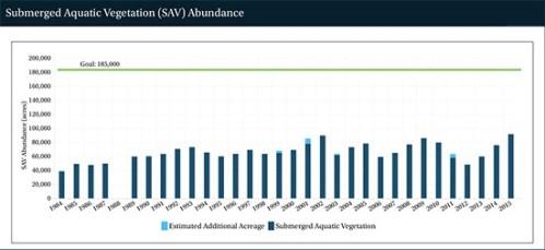 Bay SAVs chart