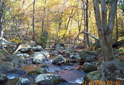 photo-1-hazel-river-near-snp-boundary