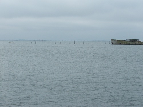 015a-bay-bridge-from-kiptopeke-state-park-oct7-2007-used-grouper-11-16-16