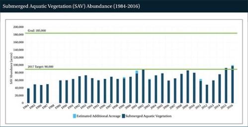 SAV chart