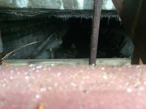 409 image 2 Stroubles Creek under Draper Road Blacksburg Feb10 2018 have audio
