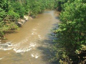 426 Image 1 Big Otter River at gage site near Ervington Rt 682 Campbell County looing downstream Jun15 2017 USED RADIO 426