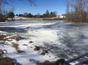 448 Image 2 ICE SNOW Duck Pond Jan19 2018 USED RADIO 448